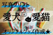 デジタル転写愛犬・愛猫ブログ